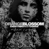 Orange Blossom - Everything must change (2004)