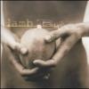 Lamb - Between Darkness & Wonder