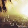 A Shoreline Dream - Avoiding The Consequences (2006)