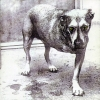 Alice In Chains - Alice In Chains (1995)