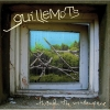 Guillemots - Through The Windowpane (2006)