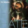The Delgados - Hate (2002)