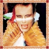 Adam & The Ants - Kings Of The Wild Frontier (Remastered) (2004)