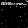 Carsten Jost - You Don't Need A Weatherman To Know Which Way The Wind Blows (2001)