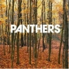 Panthers - Things Are Strange (2004)