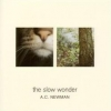 A.C. Newman - The Slow Wonder (2004)