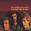 The Walker Brothers - If You Could Hear Me Now (2001)