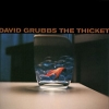 David Grubbs - The Thicket (1998)