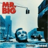 Mr. Big - Bump Ahead (1993)