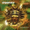 Shpongle - Nothing Lasts... But Nothing Is Lost (2005)
