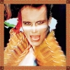 Adam & The Ants - Kings Of The Wild Frontier (2004)