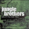 Jungle Brothers - You In My Hut Now (2002)