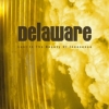 Delaware - Lost In The Beauty Of The Innocence (2006)