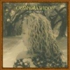 Cassandra Wilson - Belly Of The Sun (2002)