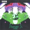 dinosaur jr. - In Session (1999)