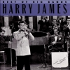 Harry James - Best Of The Big Bands (2007)