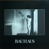 Bauhaus - In The Flat Field (1980)