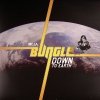 Bungle - Down To Earth (2007)