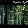 Bamboo Forest - Bamboo Forest (2003)