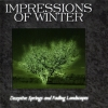IMPRESSIONS OF WINTER - Deceptive Springs And Fading Landscapes (1998)