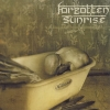 FORGOTTEN SUNRISE - Willand (2007)